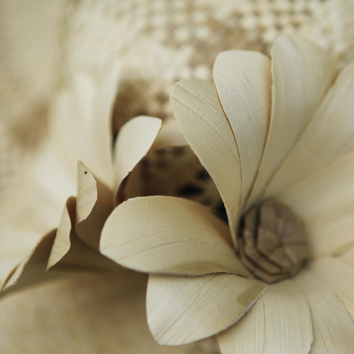 tahiti-pandanus-flower.jpg