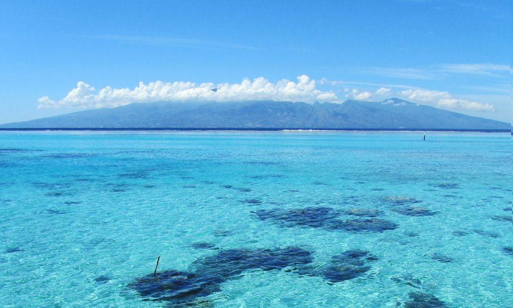 tahiti-lagoon-moorea.jpg
