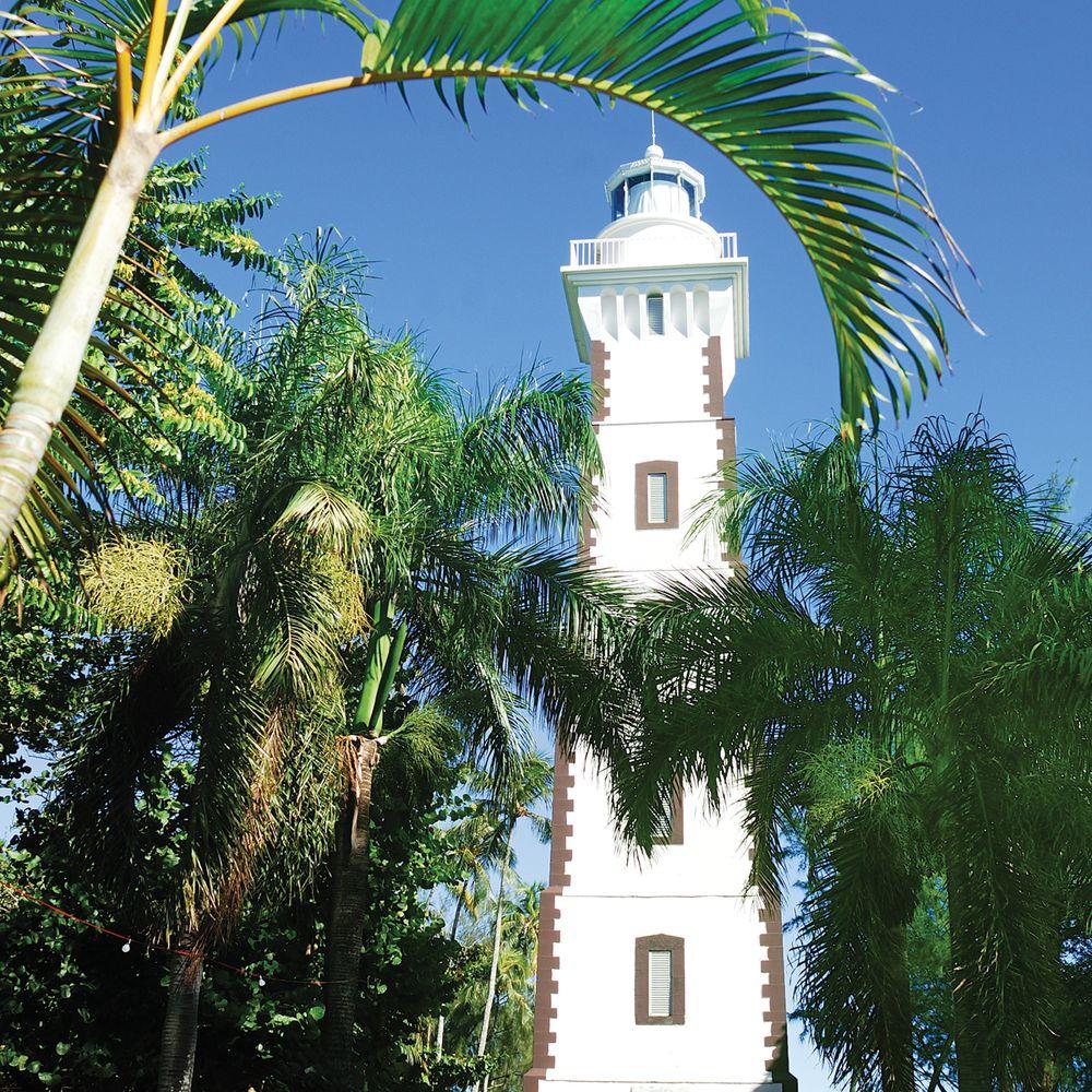 east-coast-point-venus-lighthouse.jpg