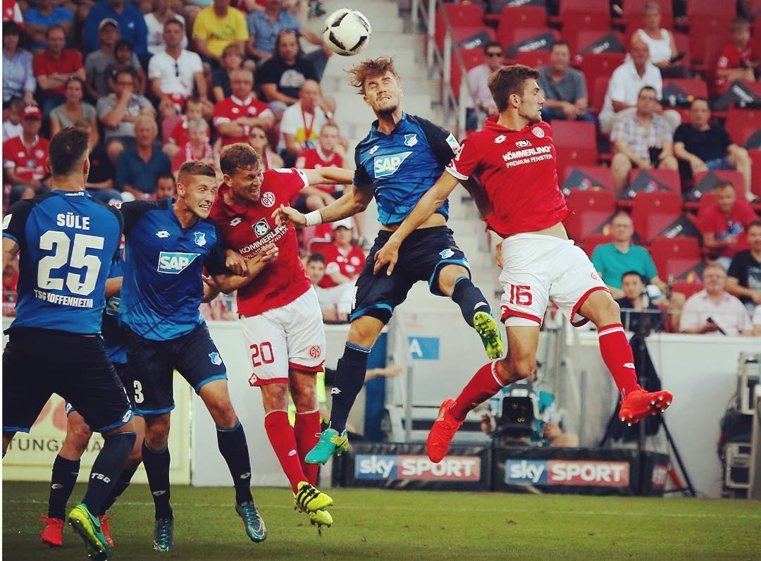 FF_Hoffenheim.jpg
