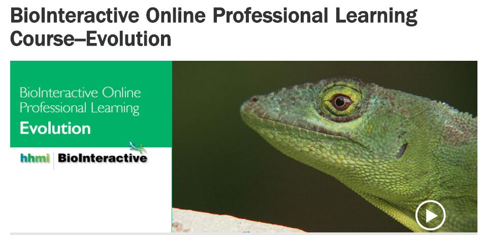 OnlineProfessionalLearningCourse