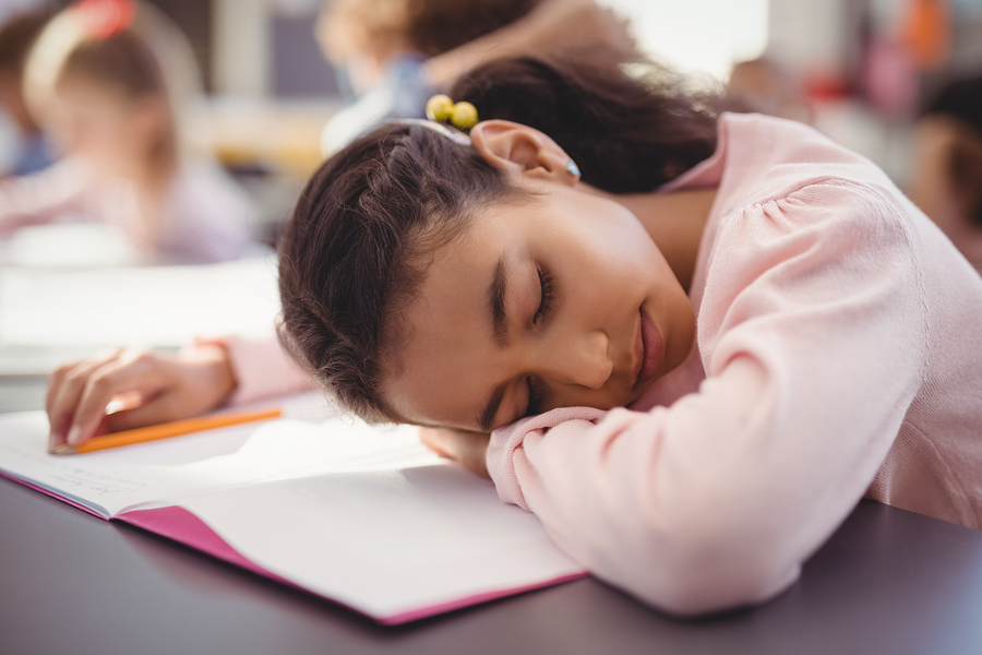 More than a leisure activity, biphasic sleep can be a resource to maximize the students' focus during class. - Photo: Bigstock.