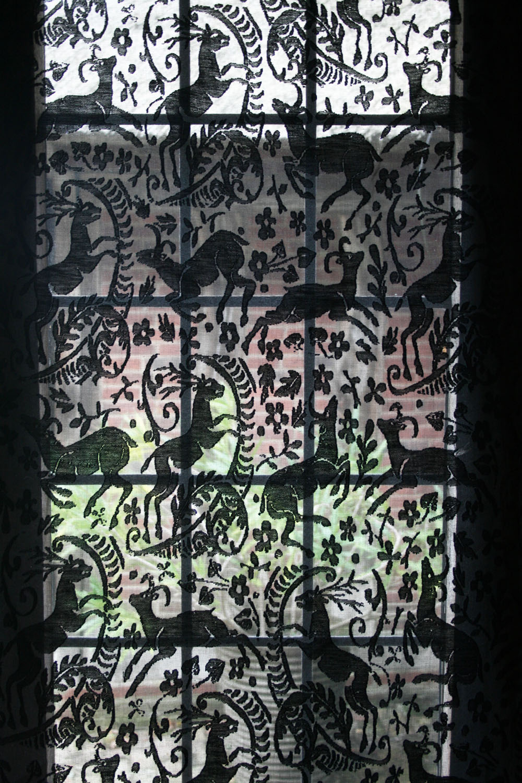 black lace 3 .jpg