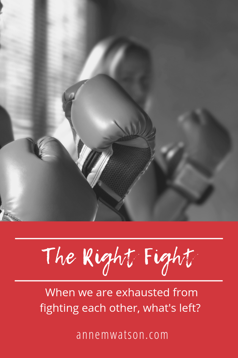 The Right Fight