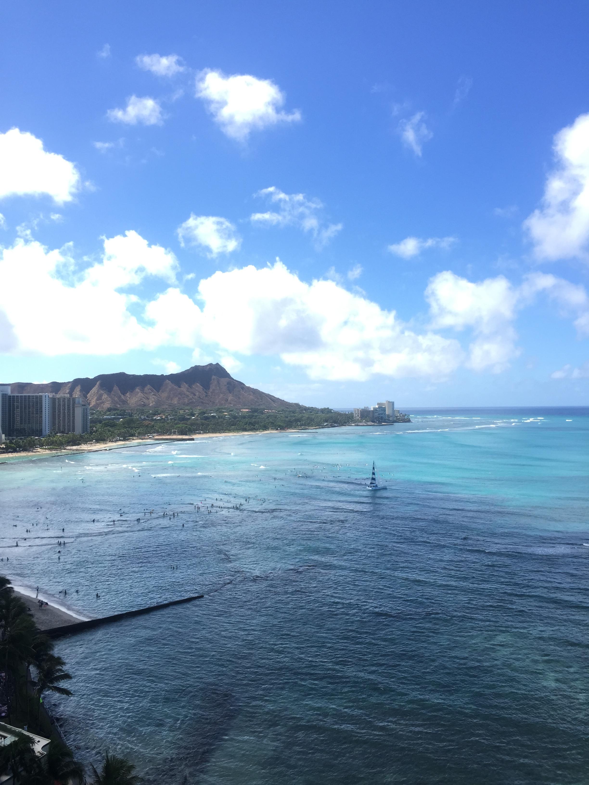 Amy Tangerine Hawaii