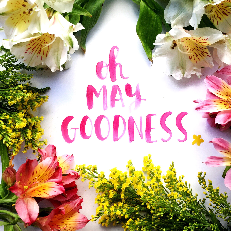 Amy Tangerine | Oh May Goodness - beautiful brush script + styling