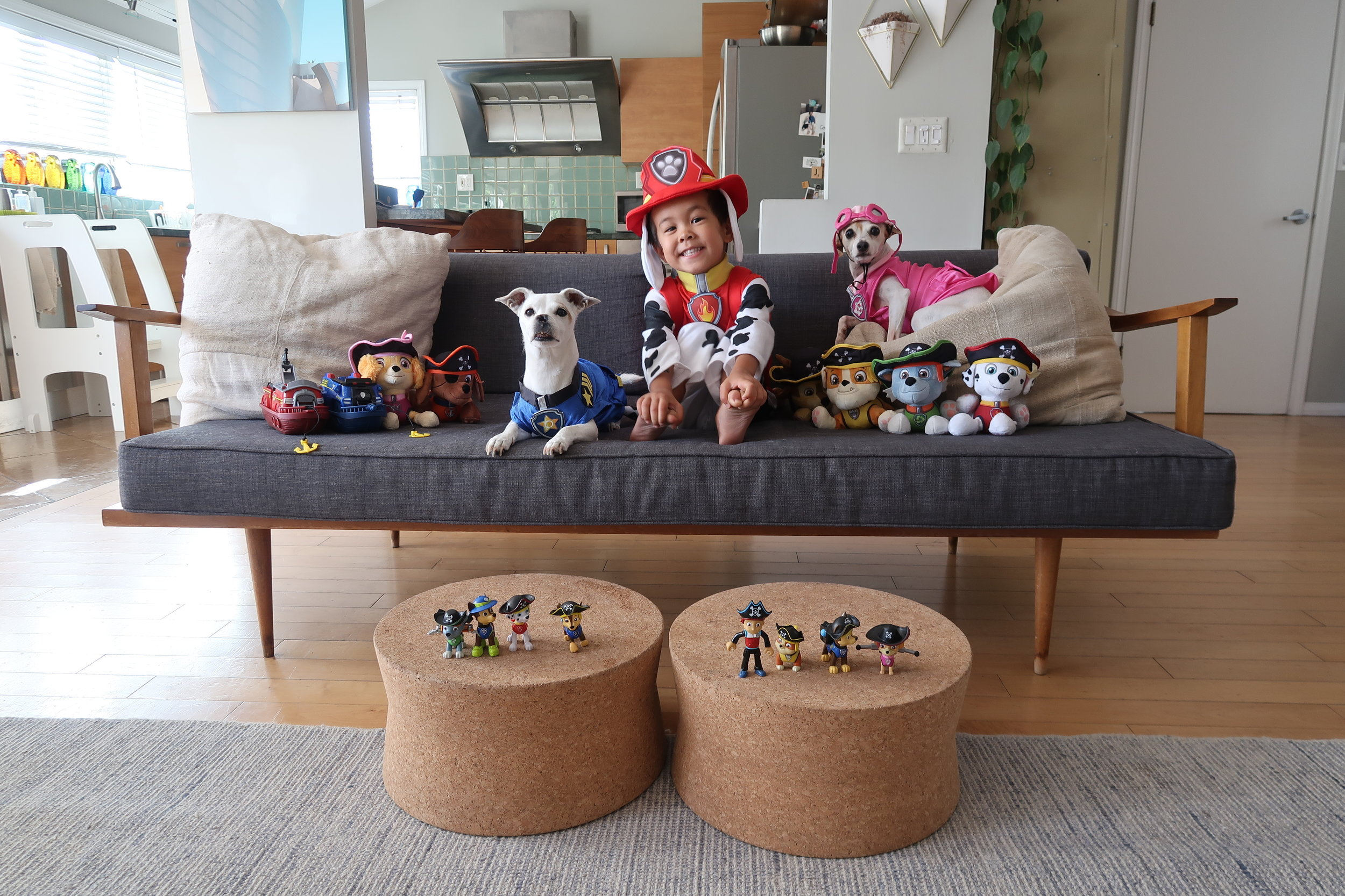 PAW Patrol Marshall + dog costumes