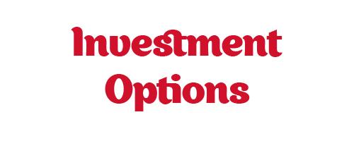 Investment Options - White.jpg