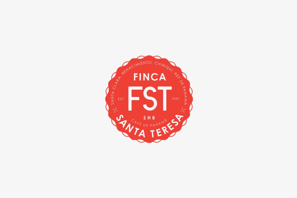fst_logo.jpg