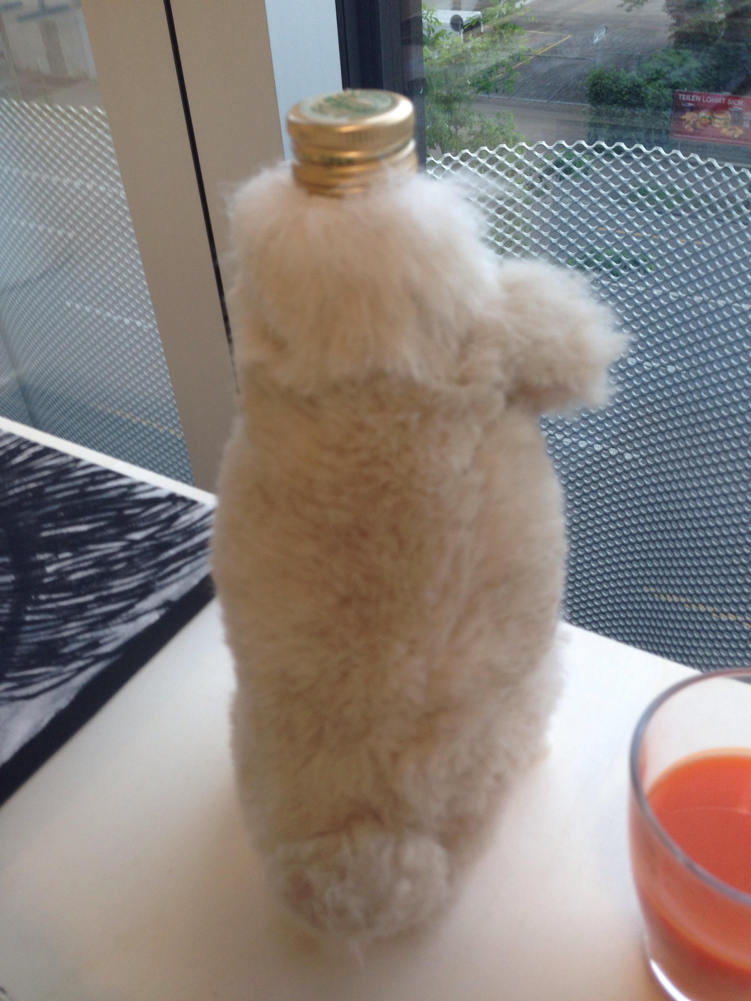 Ha(i)re Bottle