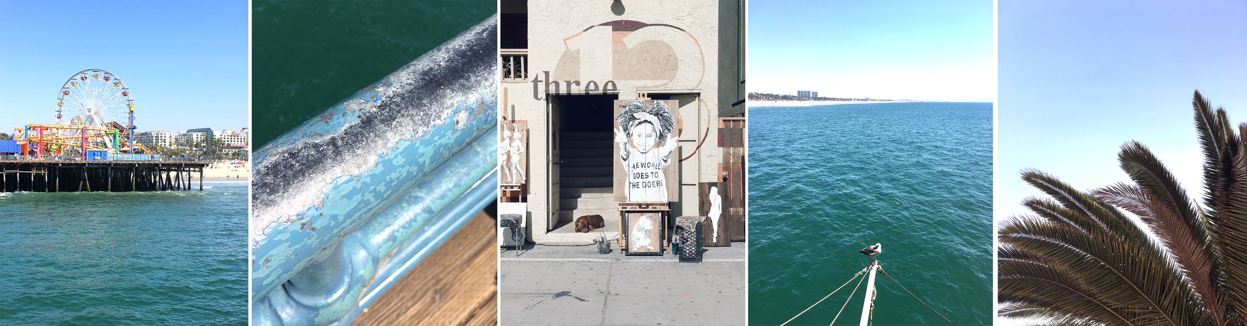 Checking out Venice Beach and the pier.