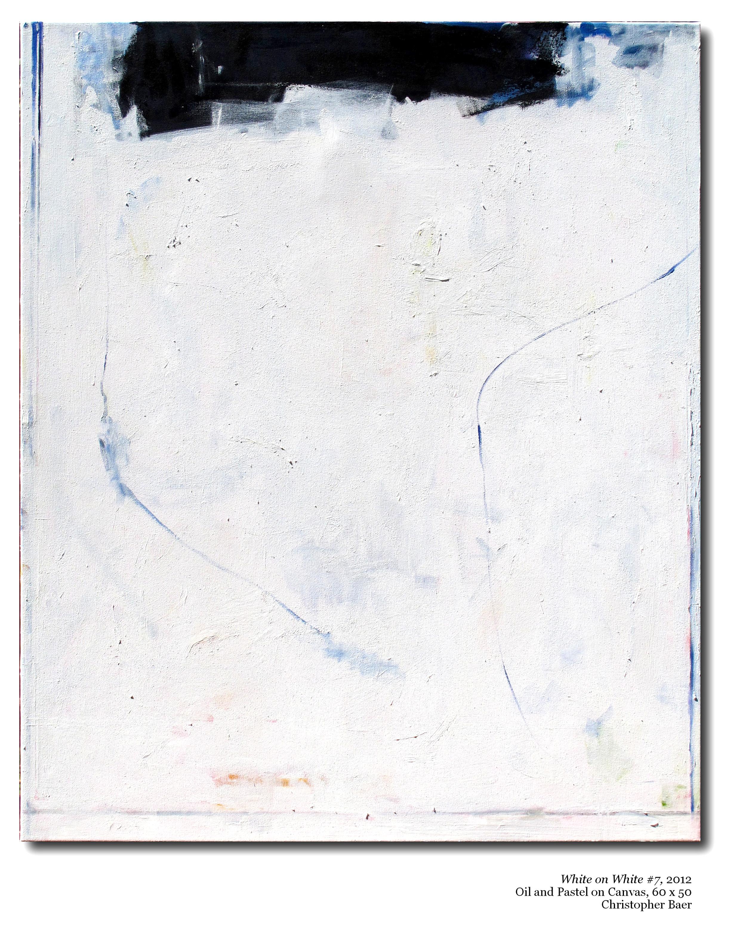 007.WhiteonWhite 2012 60x50.jpg