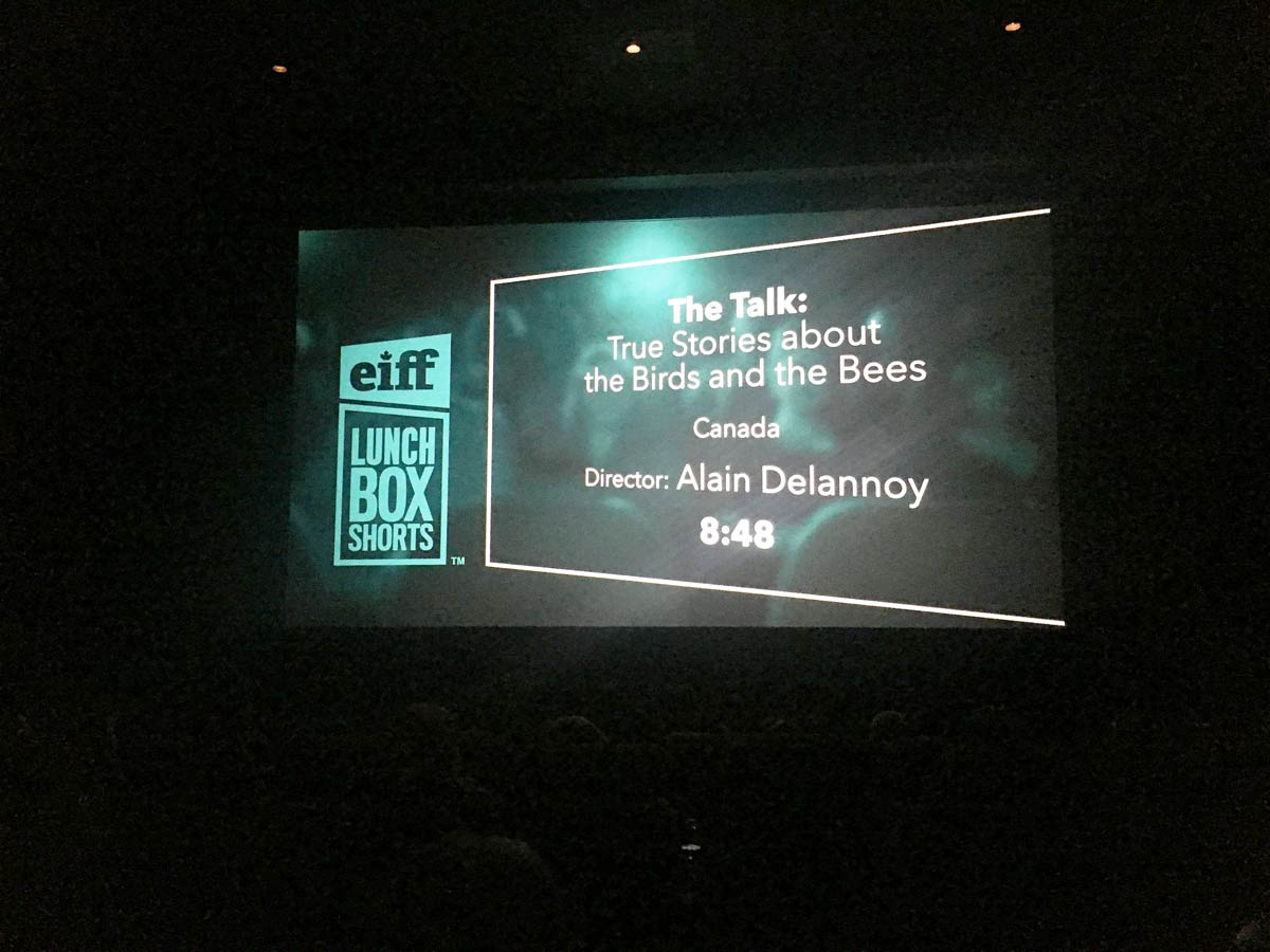 Edmonton International Film Festival - Lunchbox Shorts Slate (movie title)