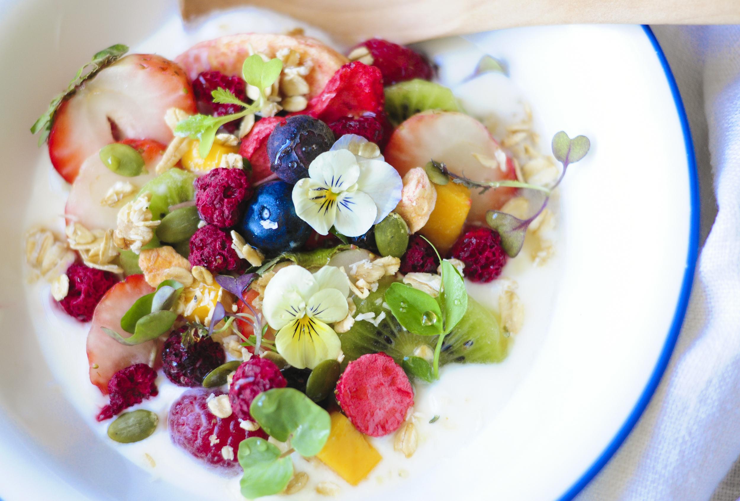 a.big.granola.fruit.nut.yogrut.berry.pumpkin.seed.forest.food.DSC_9303.jpg