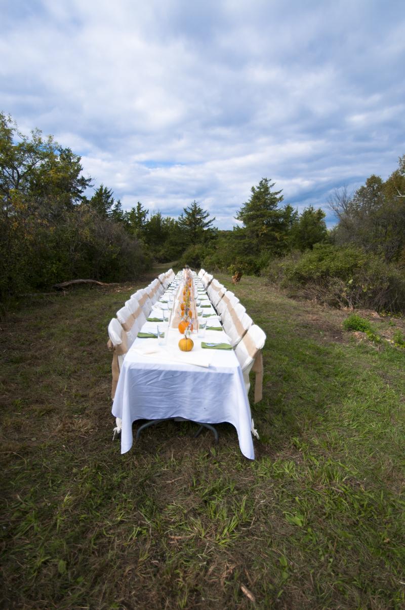 a.800.enos.farm.dinner.harvest.outside.DSC_1848.jpg