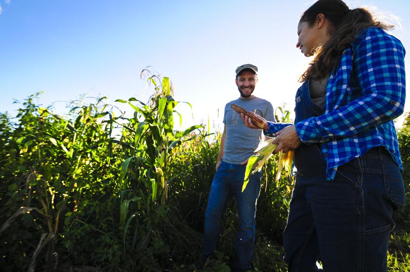 生徒たちの育てたトウモロコシをチェックする、オーガニックファーマーのジョンとリディア