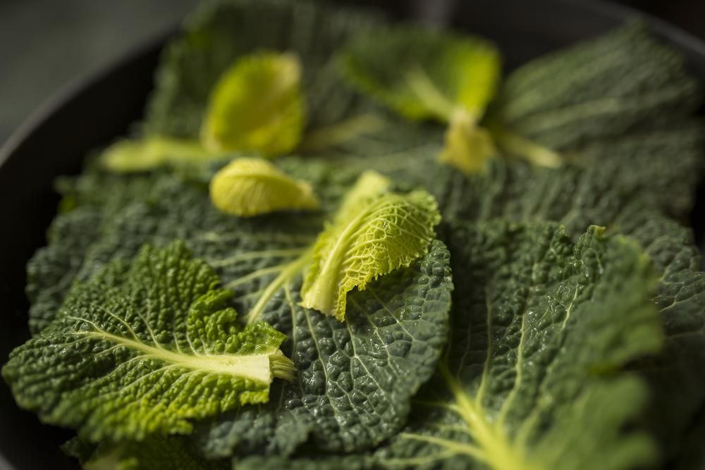 FAT-Steamed-Cabbage-Leave-Vancouver-Food-115.jpg