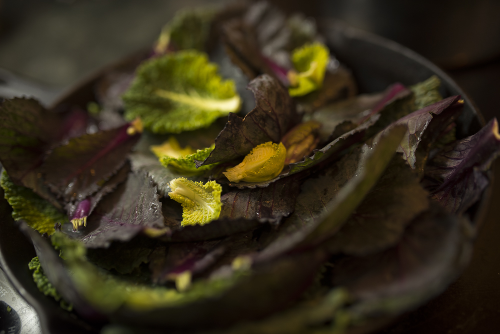 FAT-Steamed-Cabbage-Leave-Vancouver-Food-118.jpg