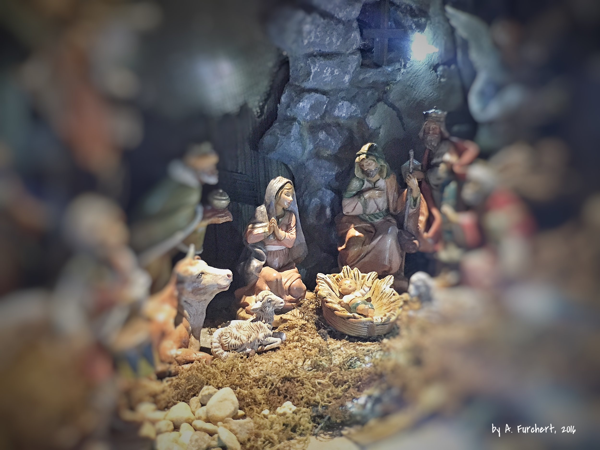 Peering into the nativity scene with child like eyes. Come and see.