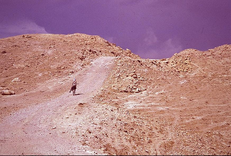 Lone rider in the Judean Desert, by Almut Furchert