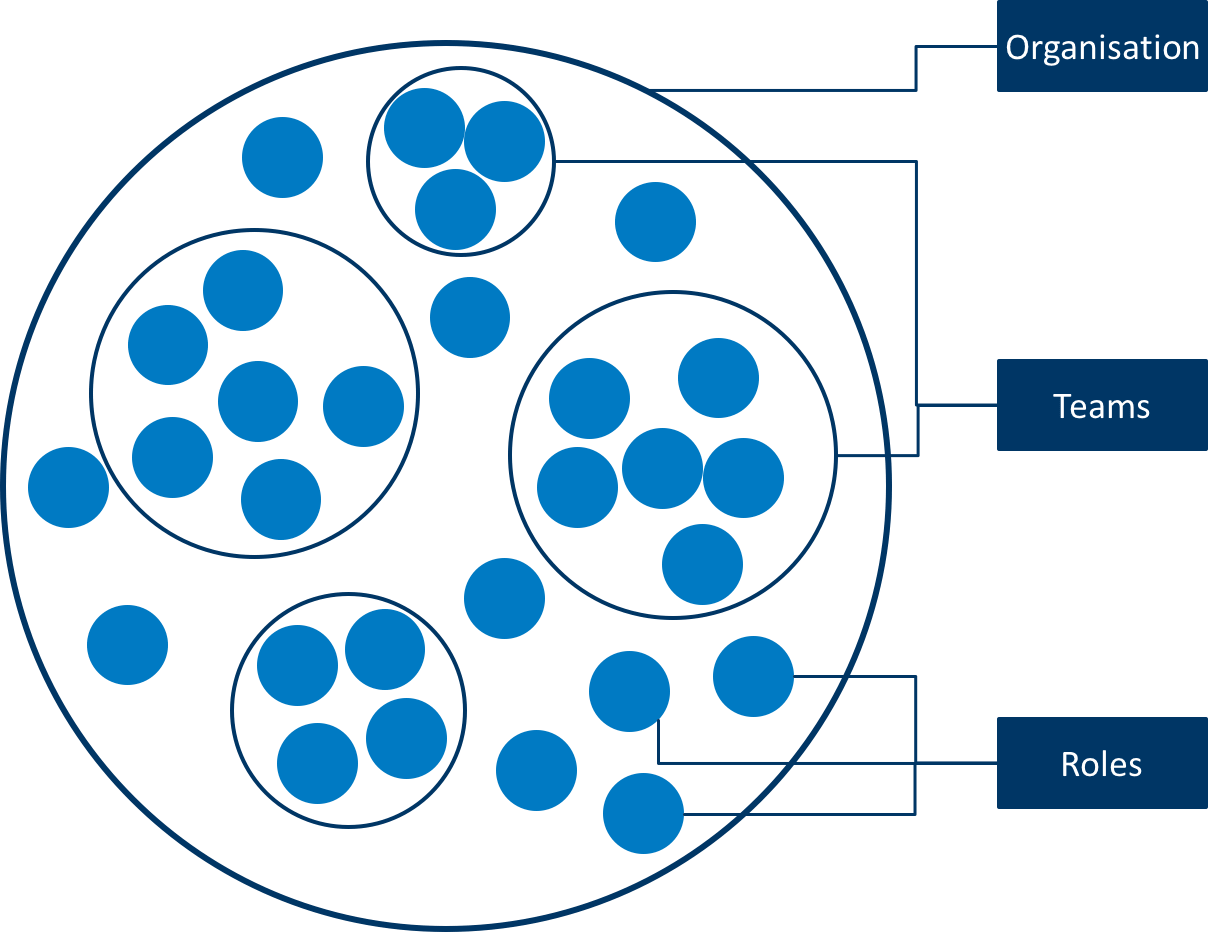 Holocratic organisational structure