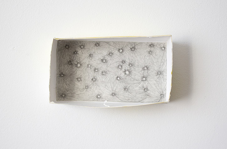 plantilla cajas melatonina.jpg