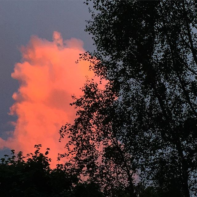 Last night's clouds  #thunder #thunderstorm #sunset #redclouds #nature #trees #soundshade