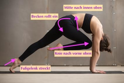 High Plank Knie vorne.jpg