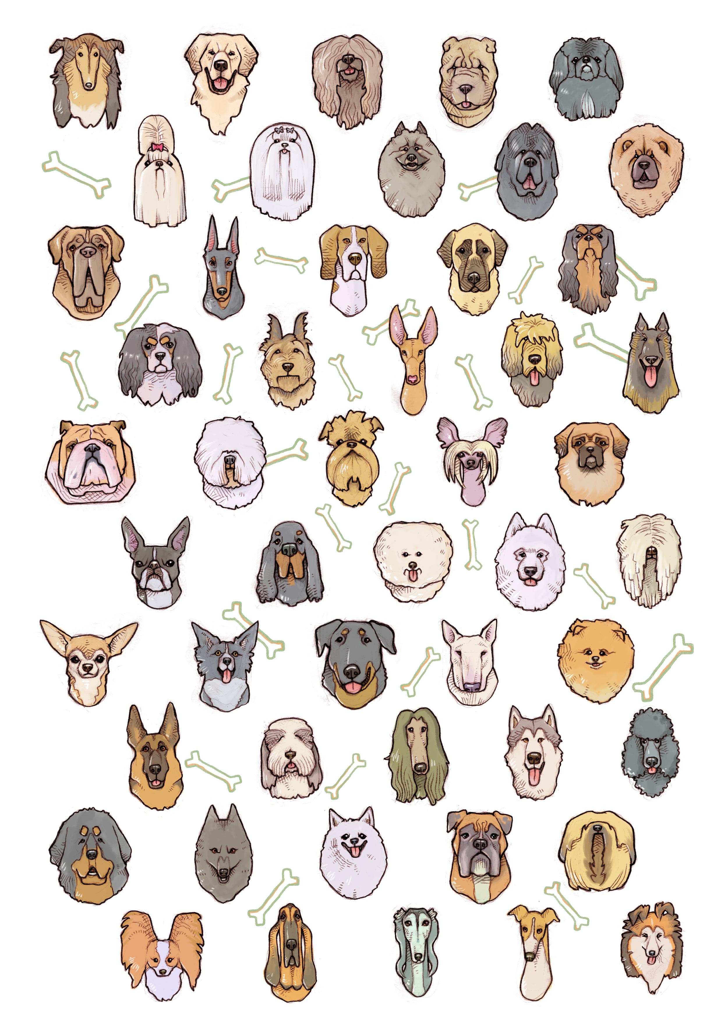 50 dogs.jpg