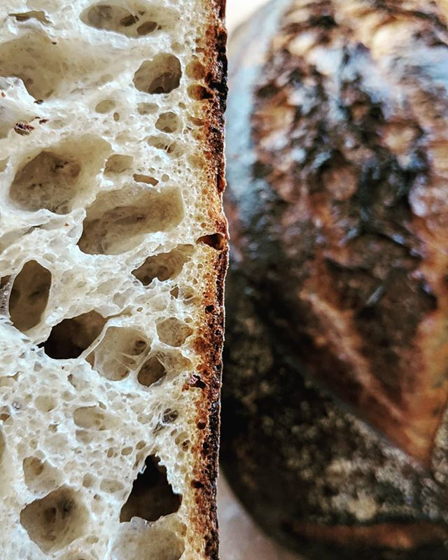 #sourdough #realbread #countryloaf