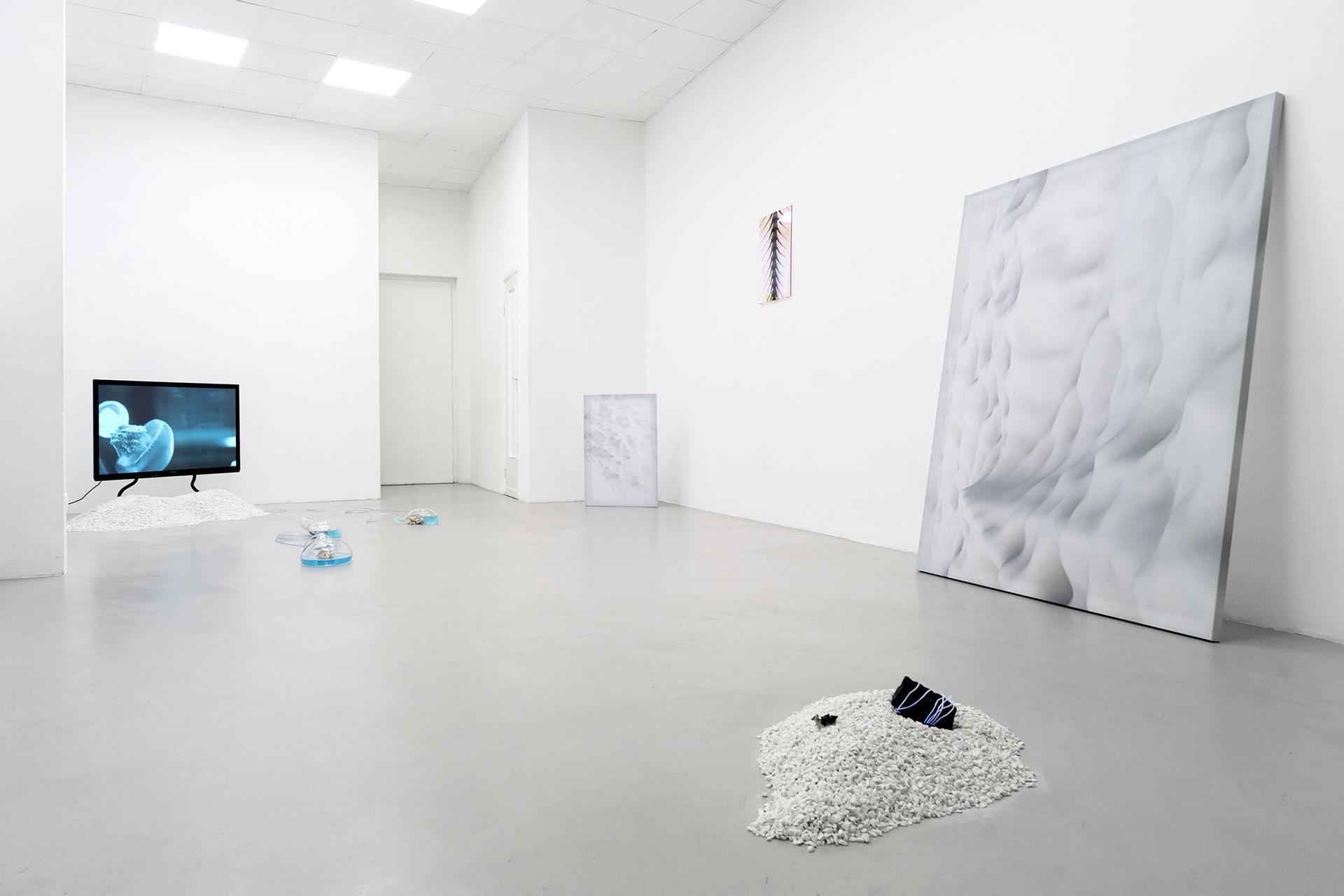 1-Paulo-Arraiano,-Sensorial-Divinities.-2019.-Exhibition-view.-Dimora-Artica-(ph-Cesare-Lopopolo).jpg
