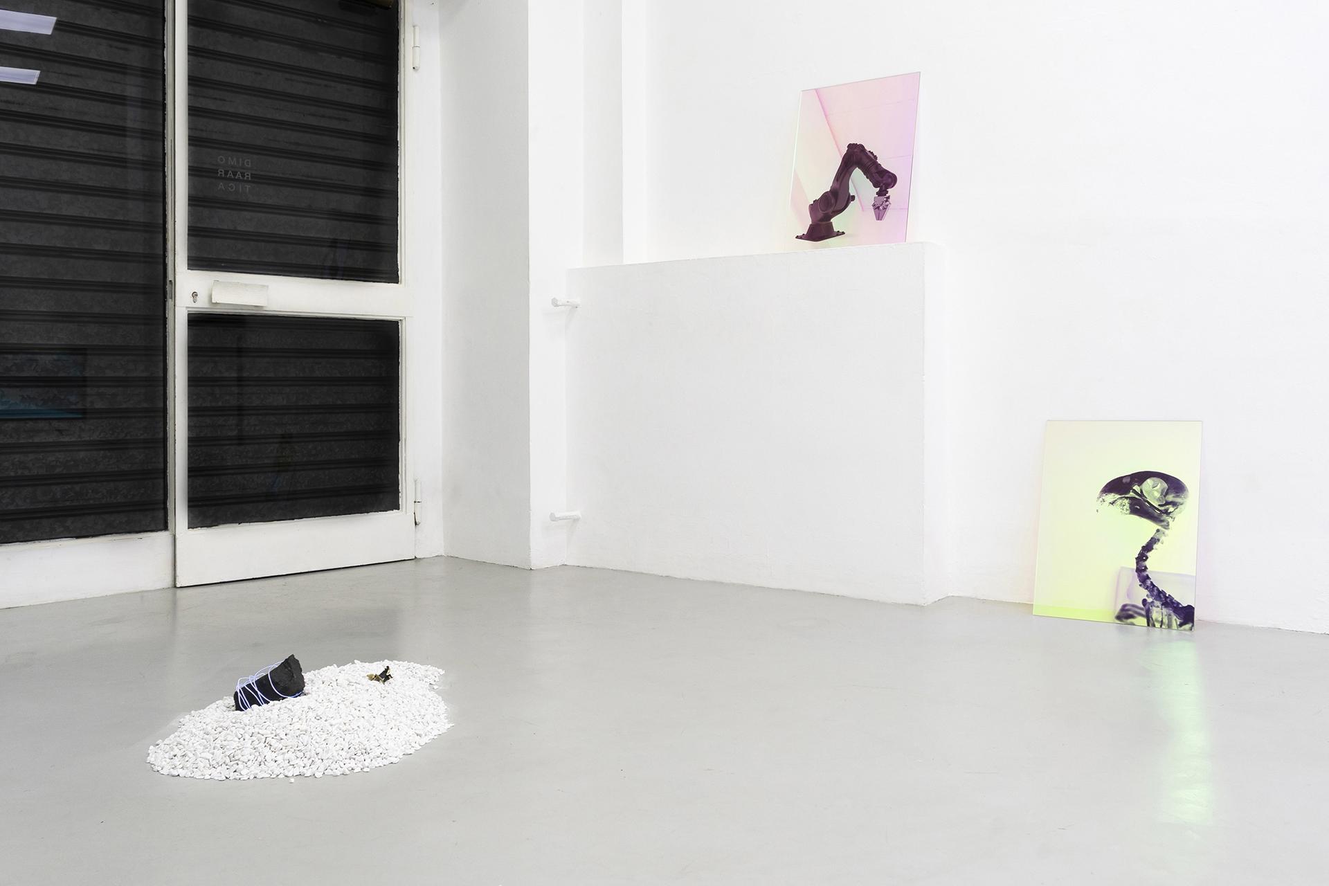 3-Paulo-Arraiano,-Sensorial-Divinities.-2019.-Exhibition-view.-Dimora-Artica-(ph-Cesare-Lopopolo).jpg