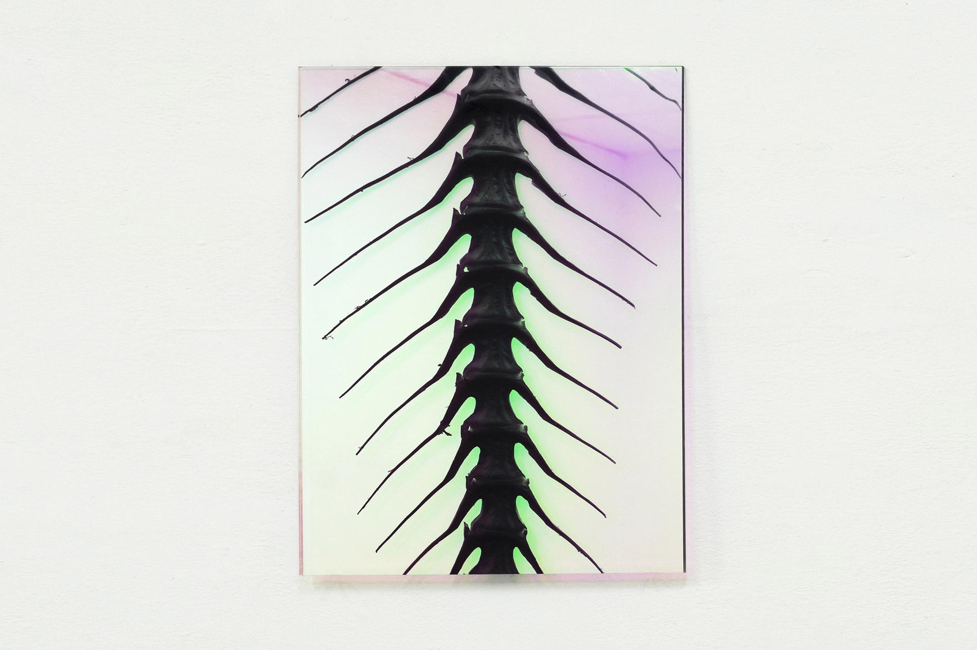 24-Paulo-Arraiano,-Sensorial-Divinities.-2019.-Exhibition-view.-Dimora-Artica-(ph-Cesare-Lopopolo).jpg