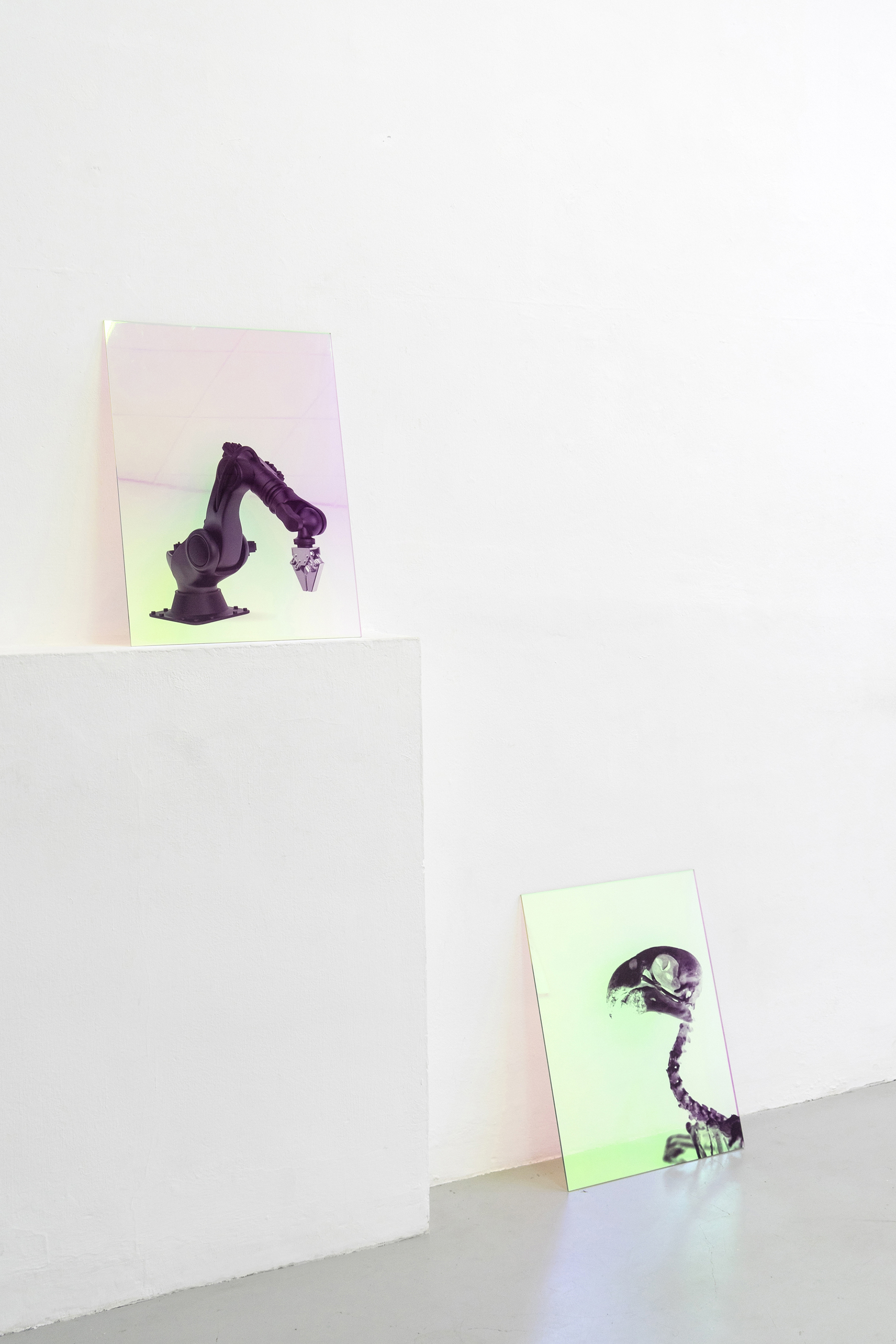 Postfossil (a2 /a3)  2019, Digital Print on dichroic film, acrylic, 60 x 45 cm Installation view at Dimora Artica, Milan