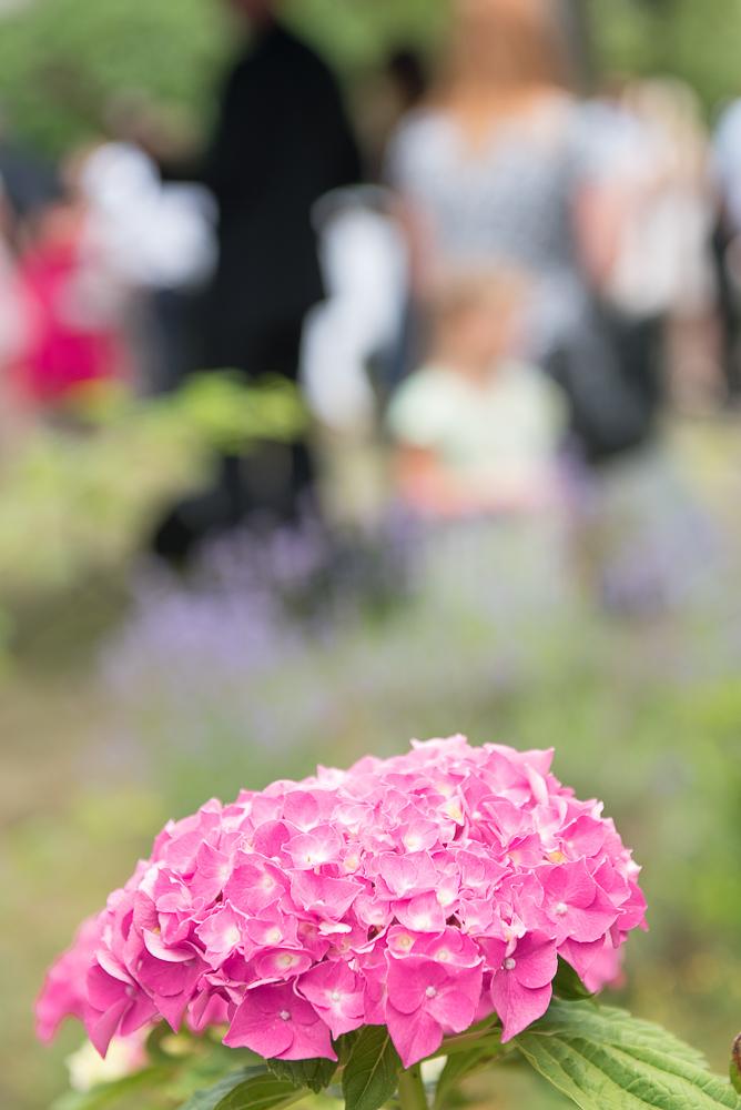 Hochzeit-Nathi-Andi-342.jpg