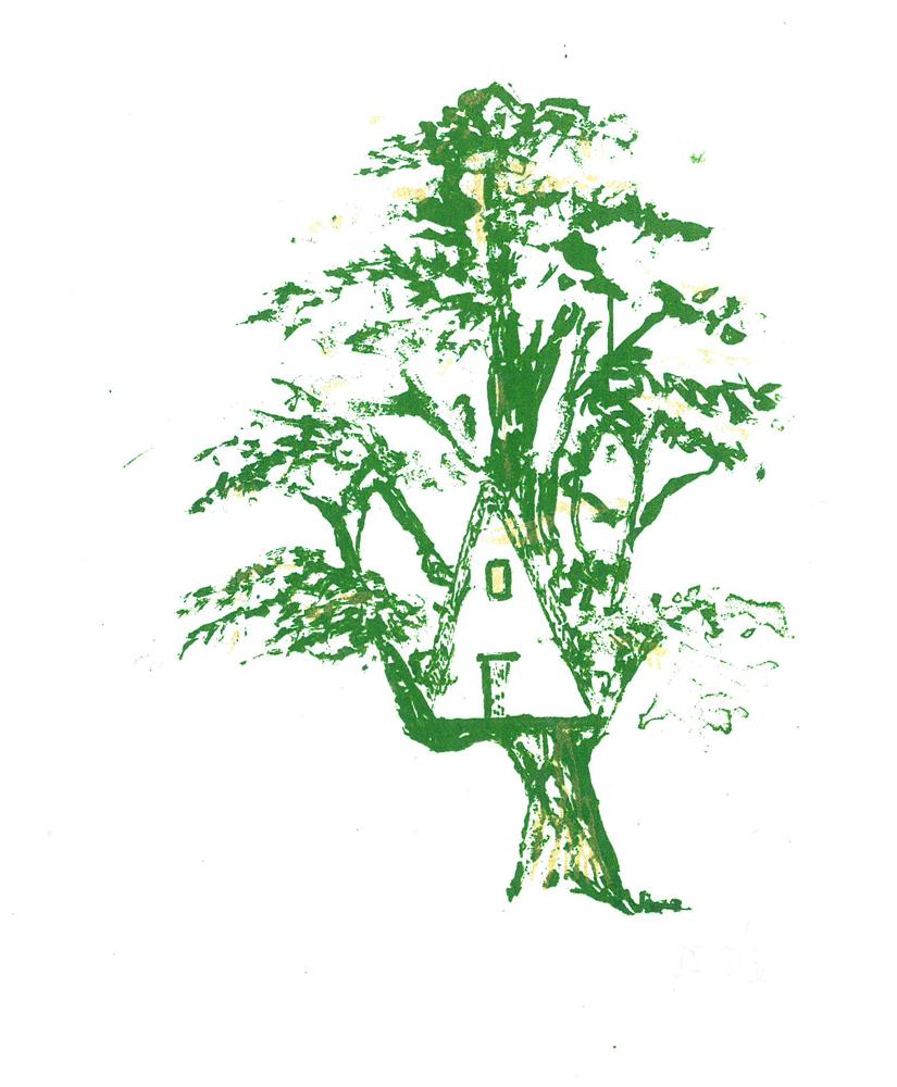 tree, cedar and tree house