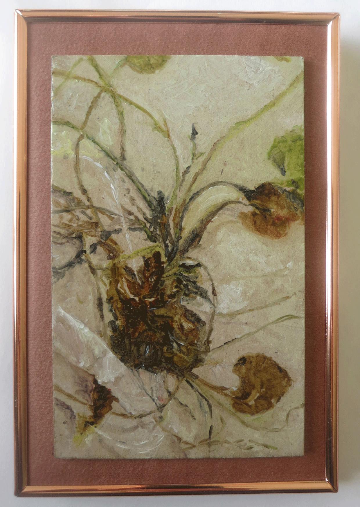 unwrapped, herbarium 1