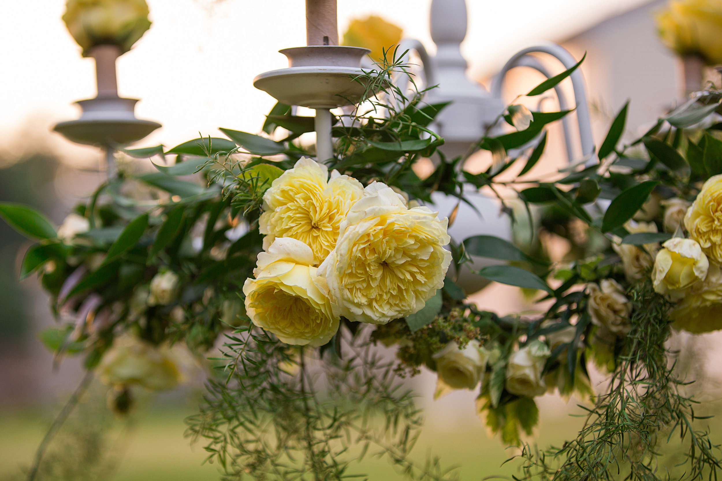 Heather Cisler Photography , Floral Design:  The Day's Design