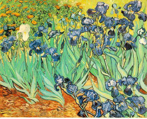 gogh.irises.jpg