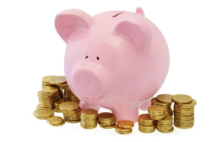 Piggy bank 2.jpg