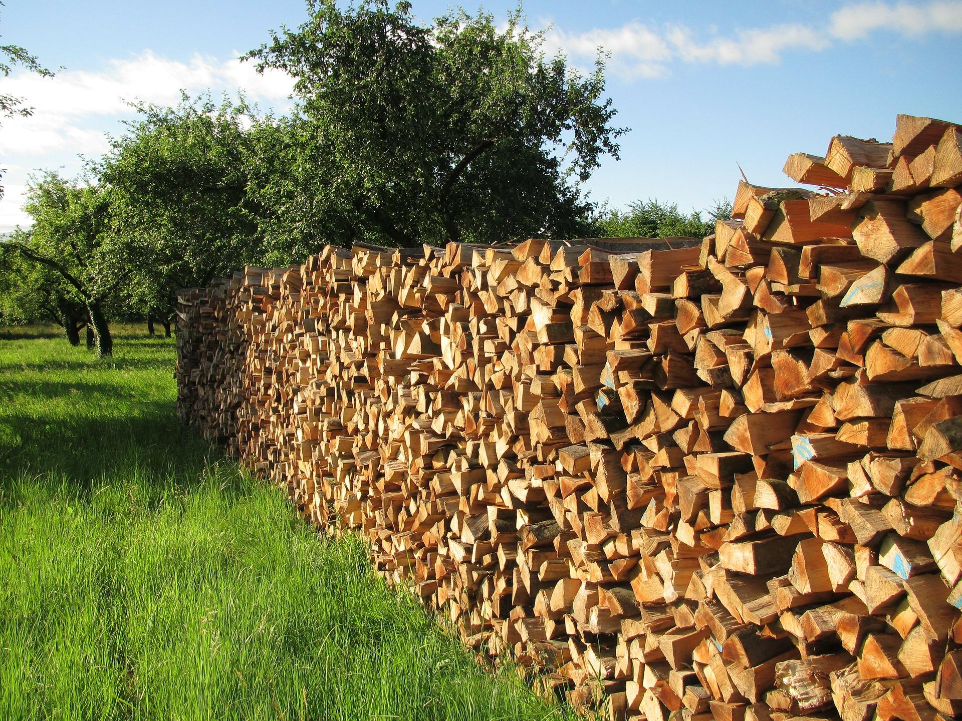 """"""" Tree Wood, Firewood, Wood, Batten """" by  Gerd Altmann  is  public domain ."""