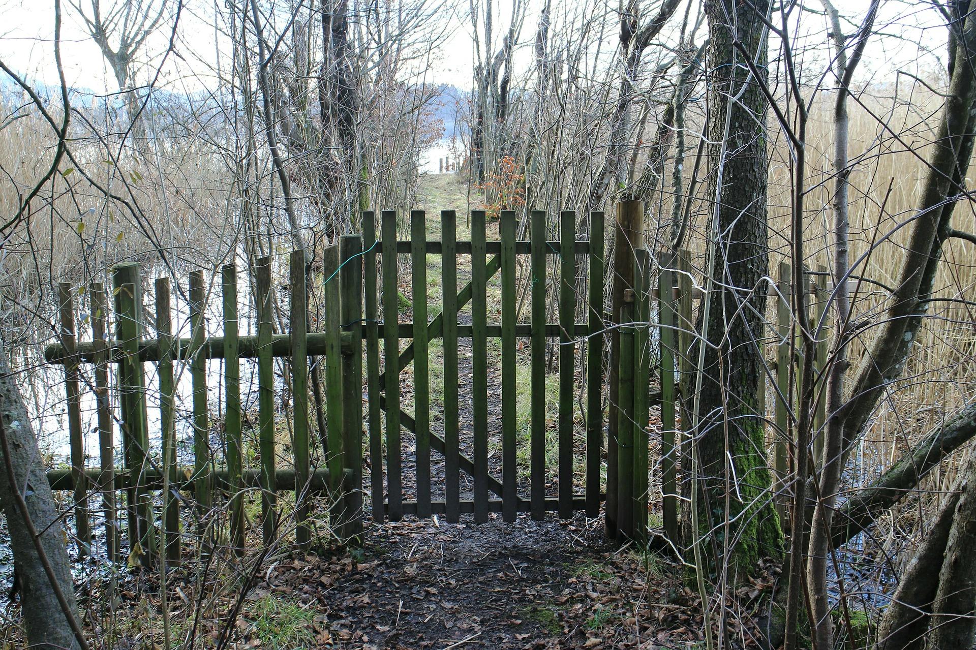 """"""" Goal, Door, Input, Garden Door """" by  Manfred Antranias Zimmer  is  Public Domain ."""