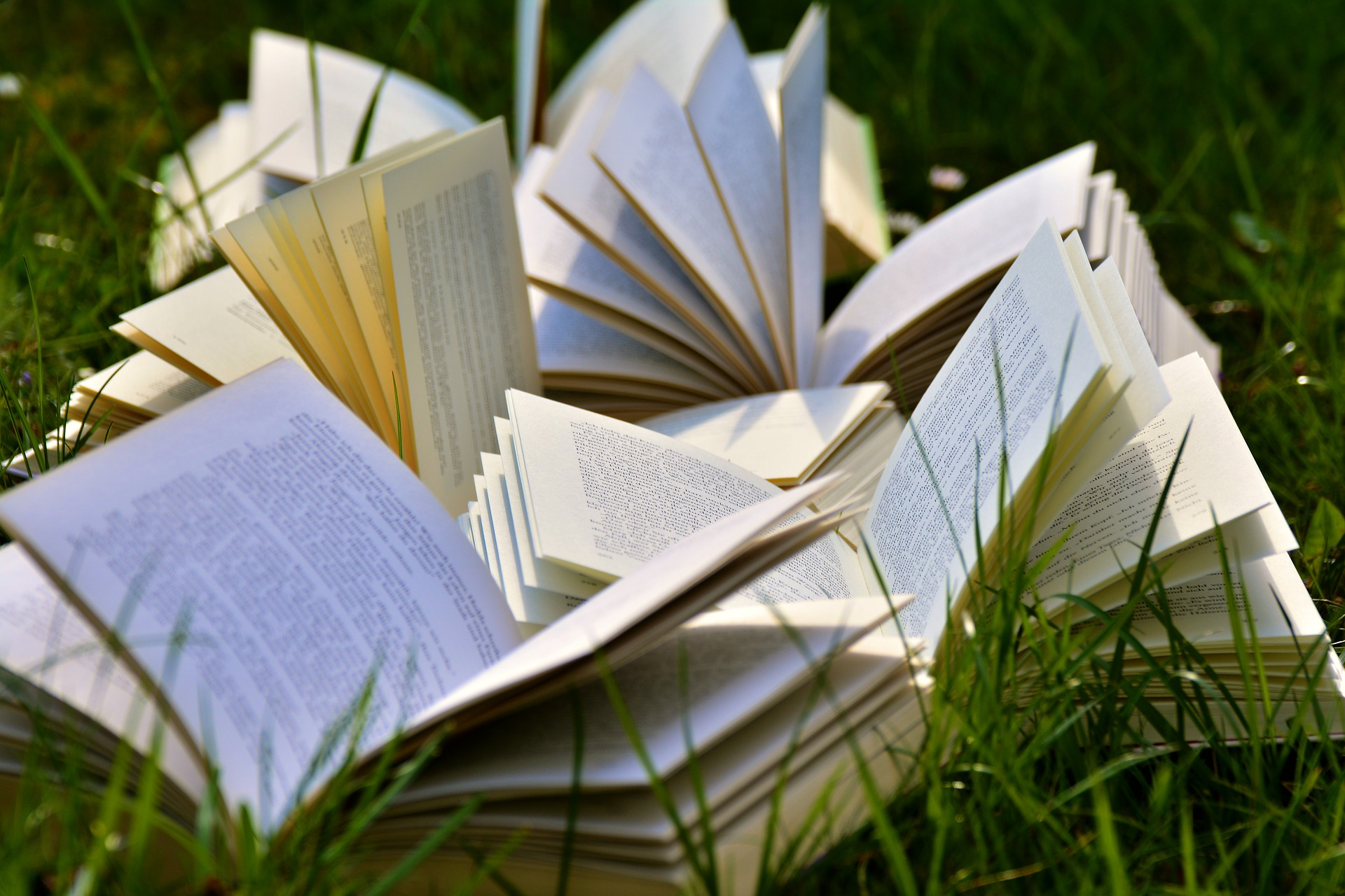""""""" Books, book pages, pitched, read... """" by  congerdesign  is  Public Domain ."""