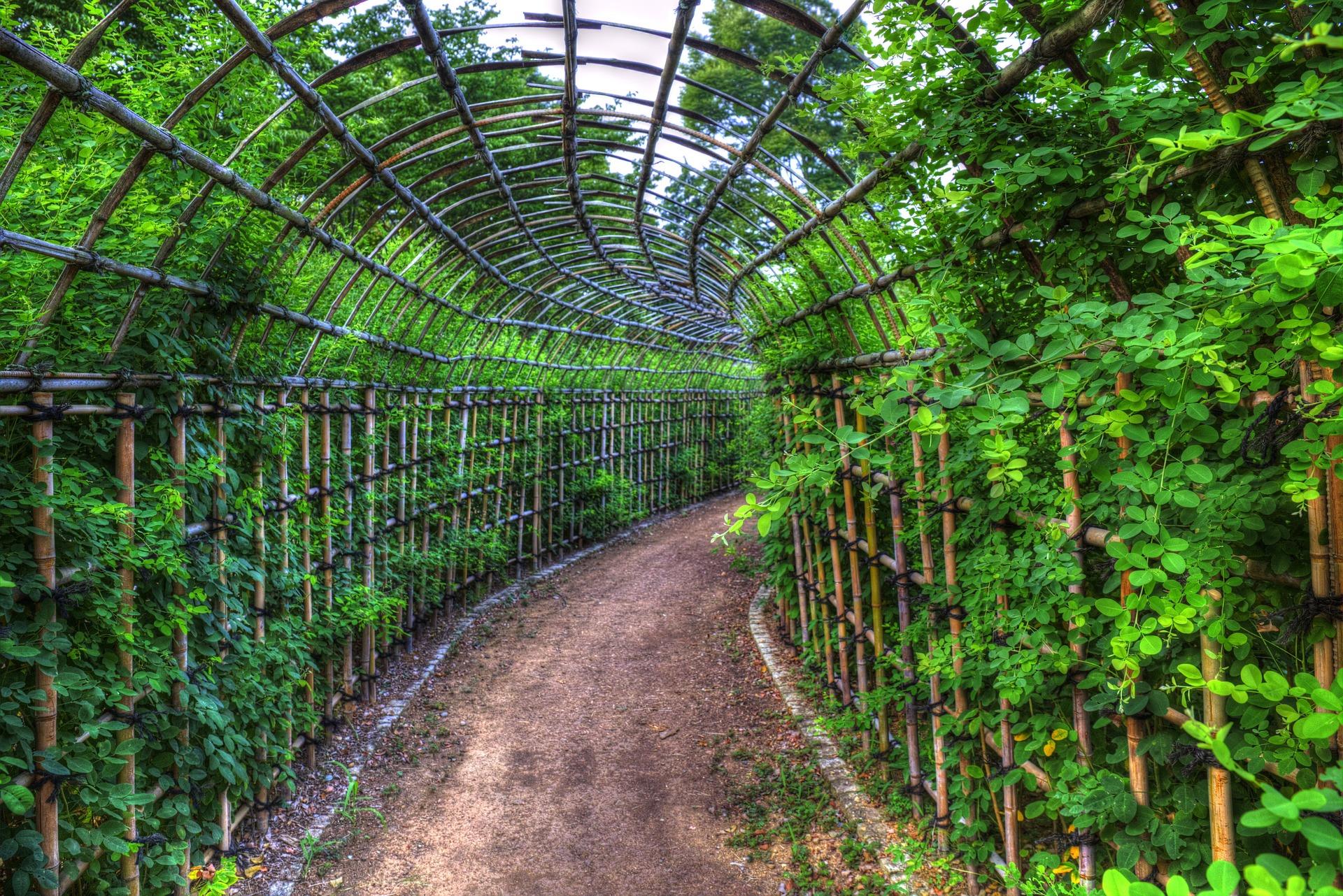 """ Tunnels, flowers, park, future "" by  大屋 開拓  is  Public Domain ."