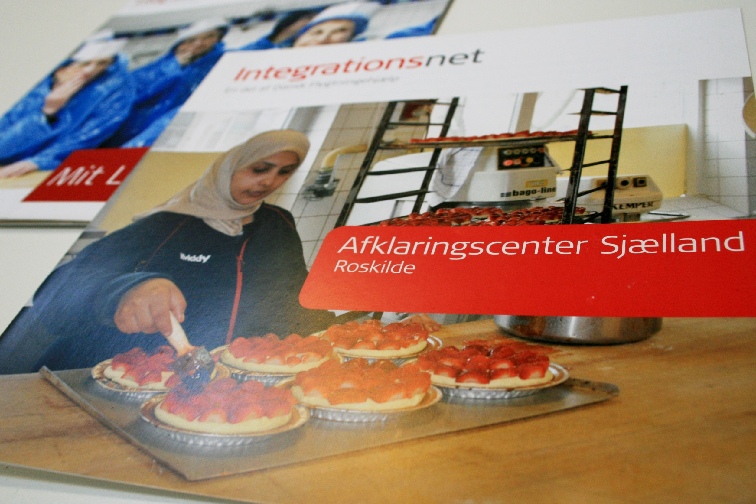 Præsentationsmateriale, Integrationsnet - en del af Dansk Flygtningehjælp
