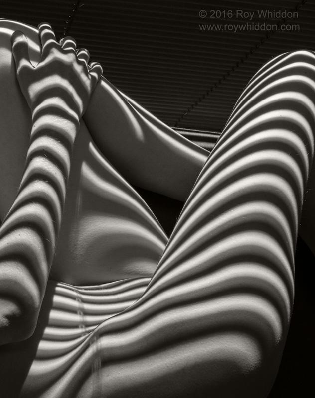 Shadow Waves IV