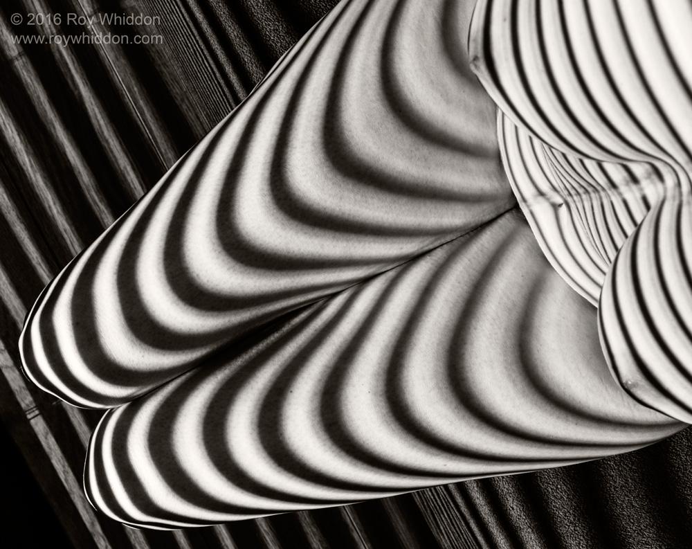 Shadow Waves VIII