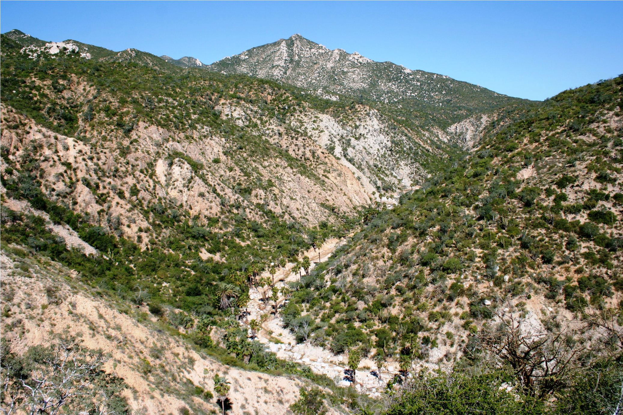 A beautiful canyon on the property, along the way to Picacho Blanco