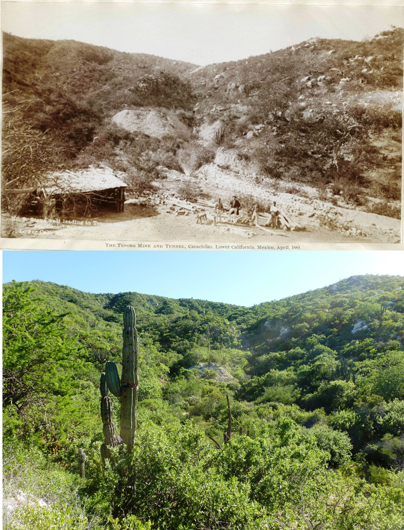 Cacachilas mining site, past and present.