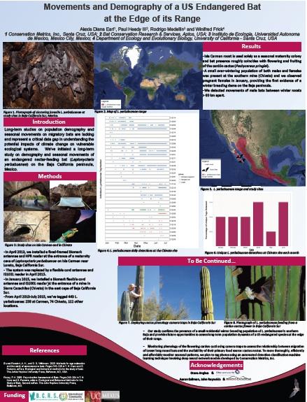 baja-bat-research-2015.jpg